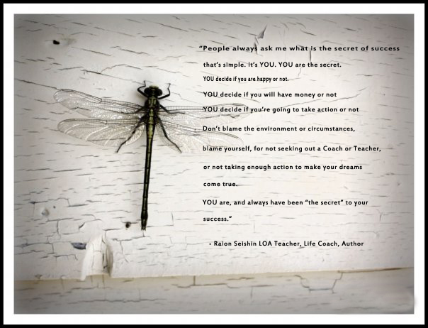 dragonfly-friend